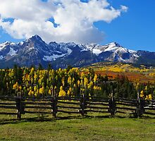 Autumn Fences by Gary Benson
