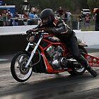 Drag Racing Harley by Paul  Donaldson