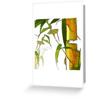 Bamboo Pattern Greeting Card