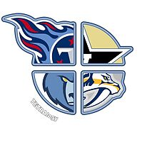 Tennessee Pro Sports TETRAlogy! Titans, Predators, Grizzlies and Vanderbilt University Commodores by Sochi