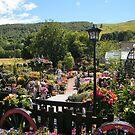 Garden in Blair Atholl, Scotland by ElsT