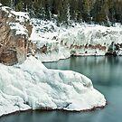 Frozen Lake Shore by April Koehler