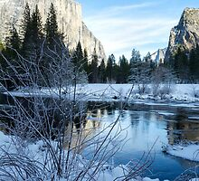 Winter landscape in Yosemite, California by Julia  Hiebaum