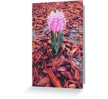 Lil Cacti Greeting Card