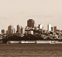 San Francisco, California by Dmitry Shuster