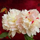 Peonies - Chinese style by © Kira Bodensted
