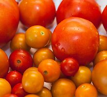 Little tomatoes by nadiamorris