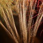 Fireworks Abstract 15 by Kevin J Cooper