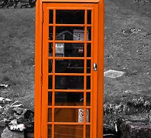 The Old Fashioned Telephone Box by terrierdog