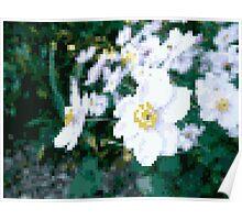 different 8bit flower Poster