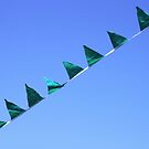 Flagged ~ by Emma  Wertheim ~