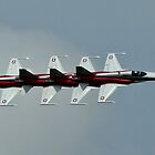 Patrouille Suisse by PhilEAF92