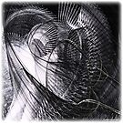 Dead pigeon by Anders Lidholm