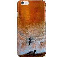 Autumn Reflection iPhone Case/Skin