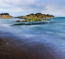 Llandwyn Shore by Ian Mitchell