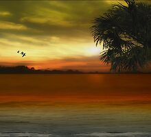 Tropical Serenity by TOM YORK
