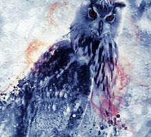 King's owl by Keizal