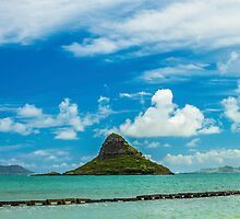 Chinaman's Hat 2 by Leigh Anne Meeks