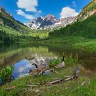 Maroon Bells Images - Canada Geese on a Summer Morning in Colorado 2 by RobGreebonPhoto