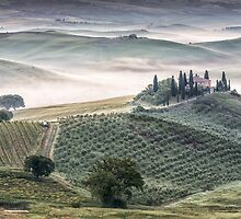 Belvedere misty morning by Vicki Moritz