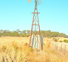 Along the fence line...tall & proud....Windmill !!! by jenkeating1