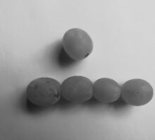 Play With Your Food - Grapes by Timothy  Ruf