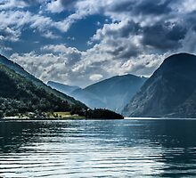 Beautiful fjords in Norway by Anastasia E