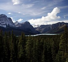 Icefields Distraction by DLOrchard