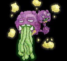 acid vomiting weezing by cavia
