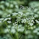 Parsley card by © Kira Bodensted