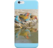 Colorful Birds from Africa - Flutter of Beauty iPhone Case/Skin