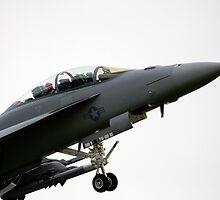 F18 Super Hornet by J Biggadike