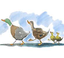 Ducks by Karen Erasmus