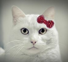 My Hello Kitty  by ibjennyjenny