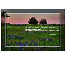 Genesis 1:11 Photographic Print