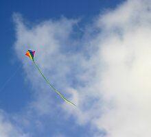 Kite by Henrik Lehnerer