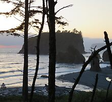 Ruby Beach with Island by jkmarshall