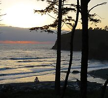 Ruby Beach in the Evening by jkmarshall