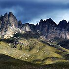 Organ Mountains of New Mexico by Sheryl Gerhard
