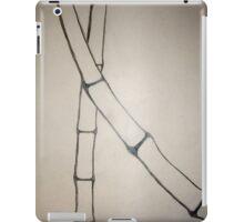 Minimalist Sumi-E iPad Case/Skin