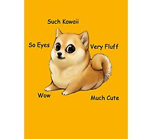 Kawaii Doge Photographic Print