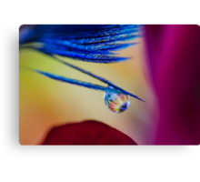 In the Soul of Eye Canvas Print
