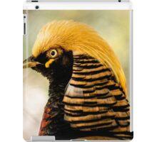 716 chinese pheasant  iPad Case/Skin