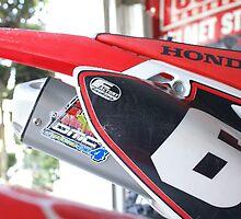 Motocross - Lucky Cricket by leih2008