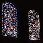Stained glass Cathedral Sens France 198405050108 by Fred Mitchell