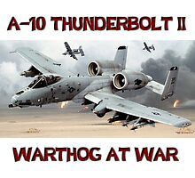 A-10 Thunderbolt Warthog at War by Mil Merchant