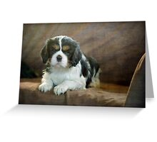 Puppy Perfect Greeting Card