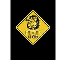 Xenomorph On Board Photographic Print