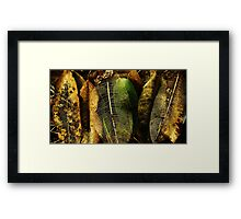 Natural decay Framed Print