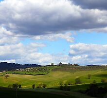 All About Italy. Tuscany Landscape 1 by Igor Shrayer